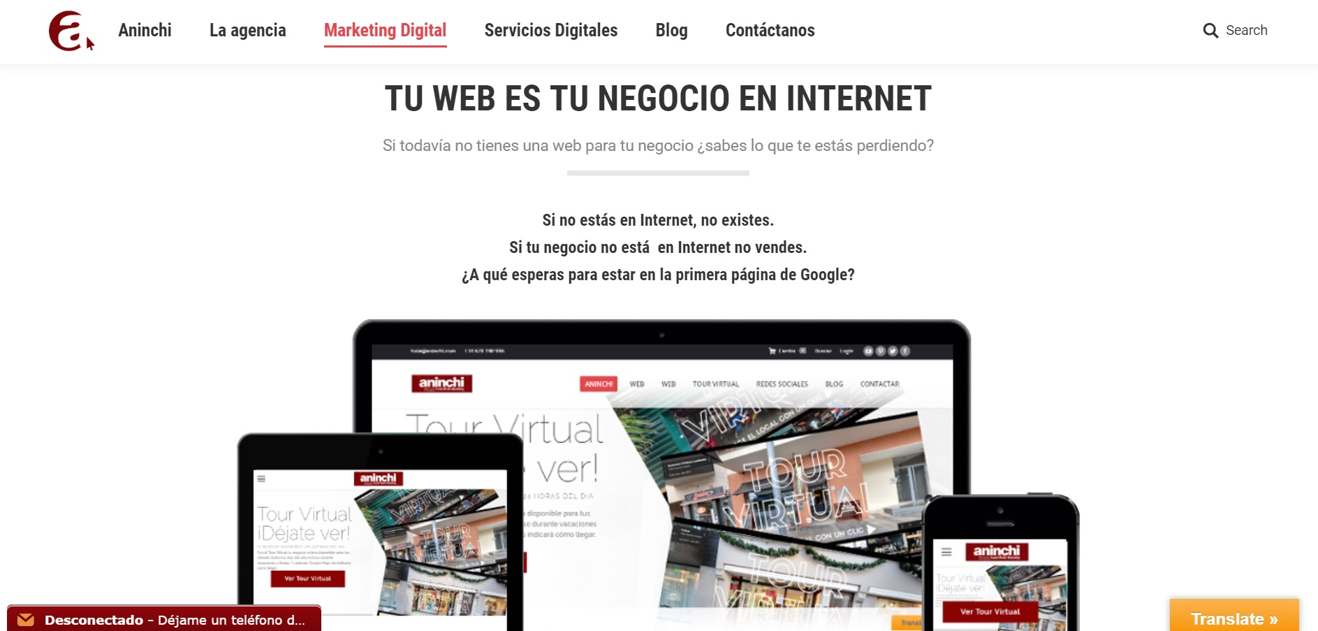 a screenshot of the aninchi.com page from spain to showcase our website portfolio