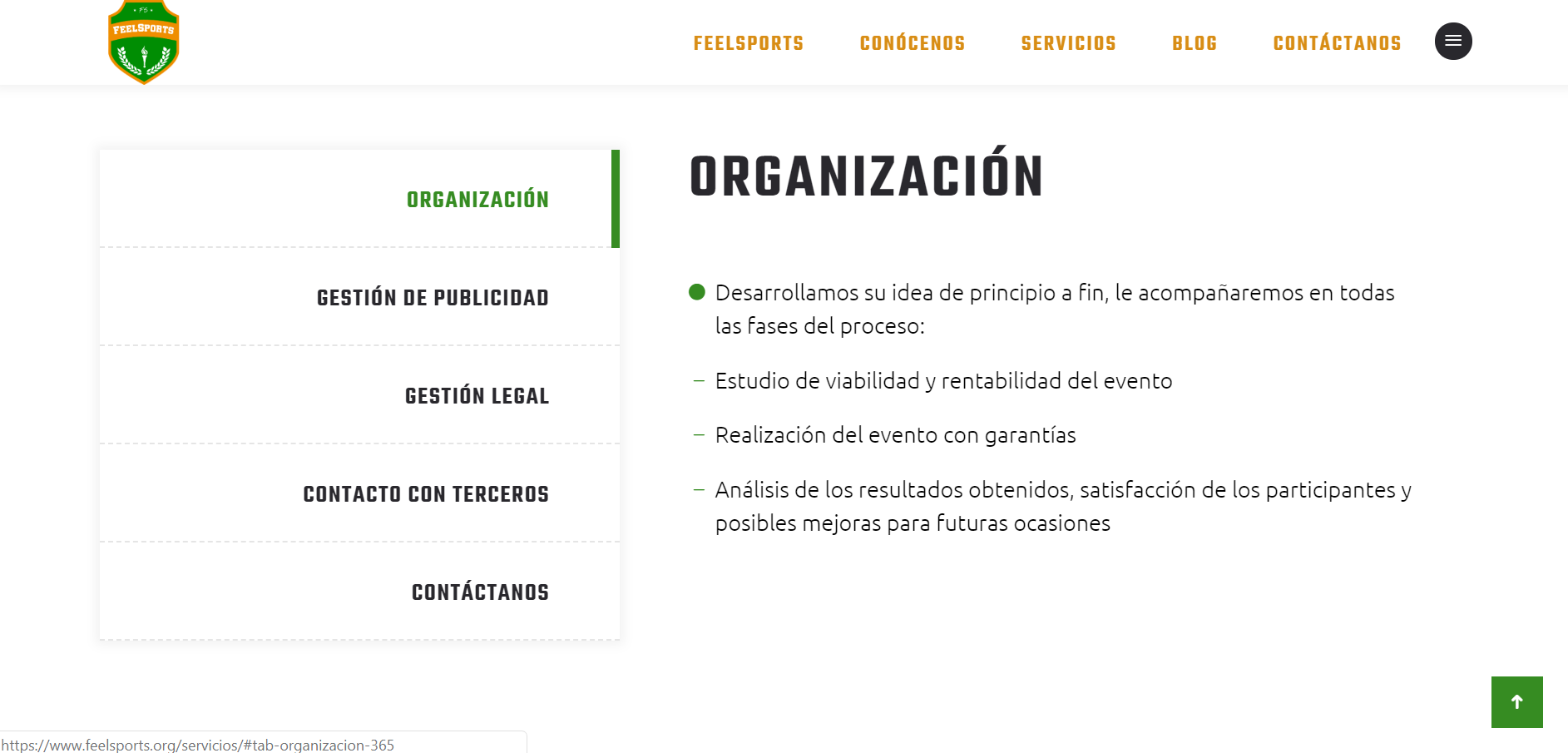 Een screenshot van de feelsports spanje website feelsports.org voor ons website portfolio